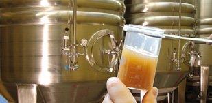 Наша пивоваренная технология
